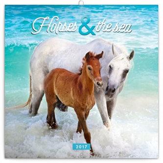 Kalendář poznámkový 2017 - Koně a moře/Christiane Slawik