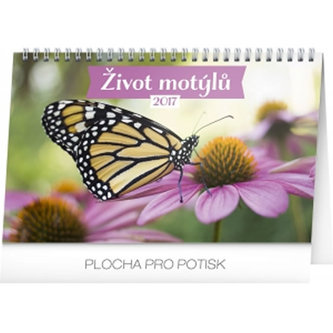 Kalendář stolní 2017 - Život motýlů