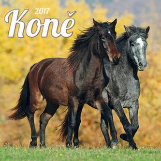 Koně 2017 - nástěnný kalendář