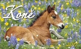 Koně 2017 - stolní kalendář