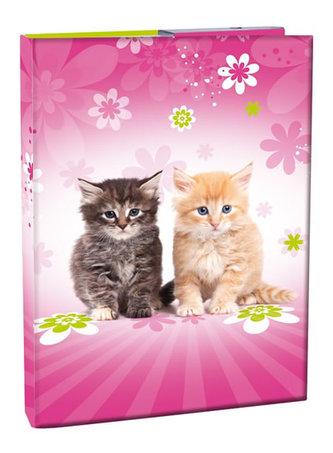 Box na sešity A4 - Cats/s klopou