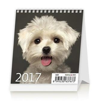 Kalendář stolní 2017 - Mini Puppies