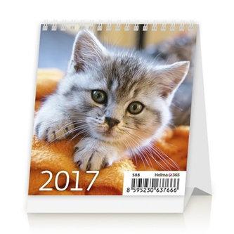 Kalendář stolní 2017 - Mini Kittens