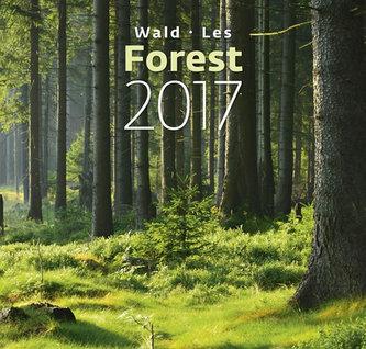 Kalendář nástěnný 2017 - Les - Forest
