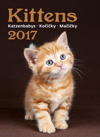 Kalendář nástěnný 2017 - Kočičky