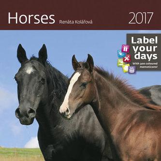 Kalendář nástěnný 2017 - Horses