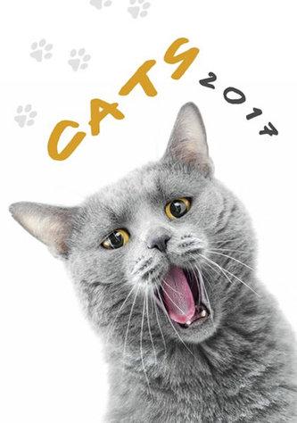 Kalendář nástěnný 2017 - Cats 315x450cm