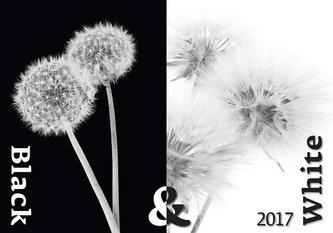 Kalendář nástěnný 2017 - Black & White