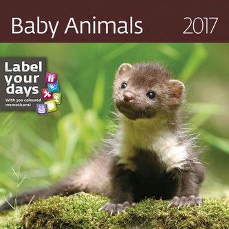Kalendář nástěnný 2017 - Baby Animals
