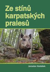 Ze stínů karpatských pralesů