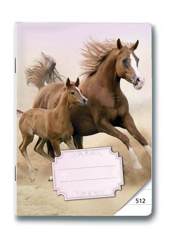 Sešit 512 Koně - neuveden