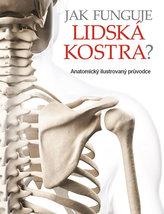 Jak funguje lidská kostra? - Anatomický ilustrovaný průvodce