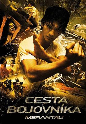 Cesta bojovníka - DVD
