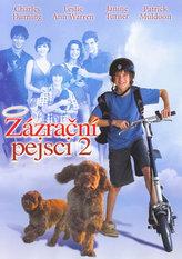 Zázrační pejsci 2 - DVD