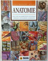 Anatomie - Ilustrovaný atlas