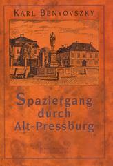 Spaziergang durch Alt - Pressburg