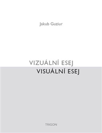 Vizuální esej / Visuální esej