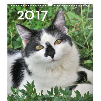 Kalendář nástěnný 2017 - Kočky - prodloužená verze