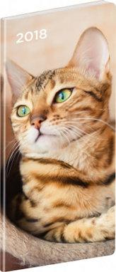 Diář 2018 - Kočky - kapesní/plánovací měsíční, 8 x 18 cm
