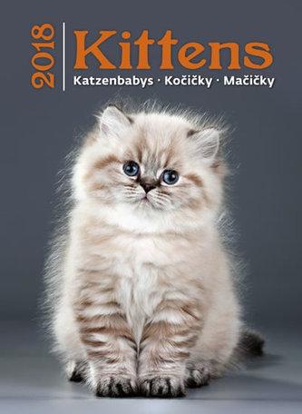 Kalendář nástěnný 2018 - Kočičky