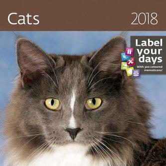 Kalendář nástěnný 2018 - Cats 300x300cm