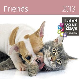 Kalendář nástěnný 2018 - Friends