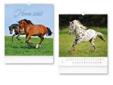 Horses 2018 - nástěnný kalendář