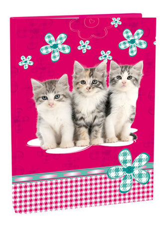 Box na sešity A5 - Cats - neuveden