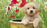 Psi 2018 - stolní kalendář