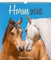 Koně 2018 - nástěnný kalendář