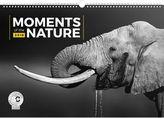 Momenty v přírodě 2018 - nástěnný kalendář