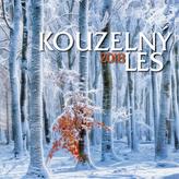 Kouzelný les 2018 - nástěnný kalendář