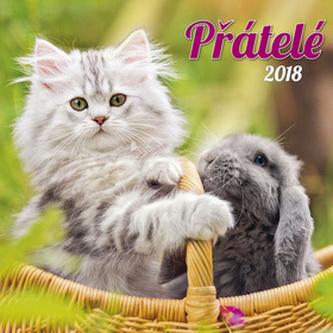 Přátelé 2018 - nástěnný kalendář