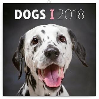 Psi - nástěnný kalendář 2018