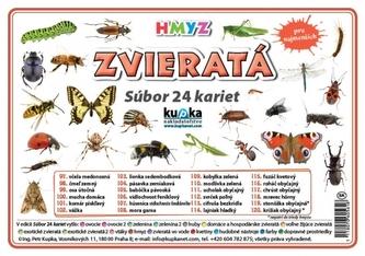 Súbor 24 kariet - zvieratá (hmyz) - Kupka Petr