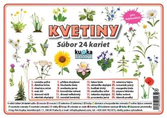 Súbor 24 kariet - kvetiny - Kupka Petr