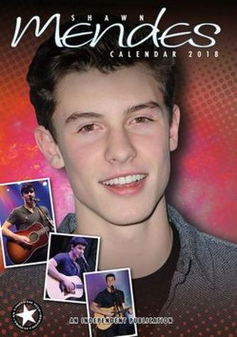 Shawn Mendes - nástěnný kalendář 2018 - neuveden