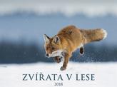 Zvířata v lese 2018 - nástěnný kalendář