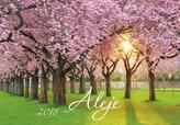 Aleje 2018 - nástěnný kalendář