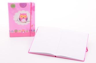 Zápisník dívčí A5 s gumou Sovičky