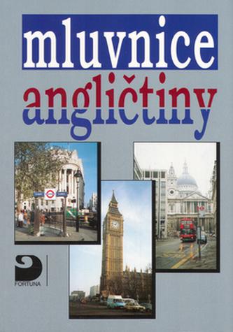 Mluvnice angličtiny - Náhled učebnice