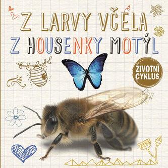 Z larvy včela, z housenky motýl - Životní cyklus - Jones, Grace