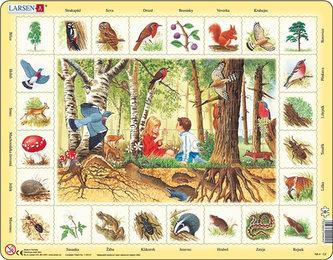 Puzzle MAXI - Život v lese/48 dílků - neuveden