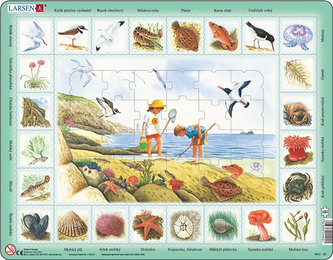 Puzzle MAXI - Život u moře/48 dílků - neuveden