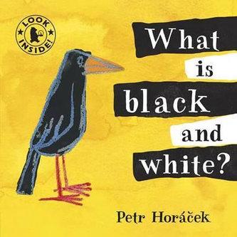 What Is Black and White - Petr Horáček
