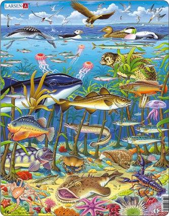 Puzzle MAXI - Zvířata v moři/60 dílků - neuveden