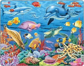 Puzzle MAXI - Korálový útes/35 dílků - neuveden
