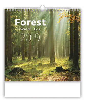 Kalendář nástěnný 2019 - Forest/Wald/Les - neuveden