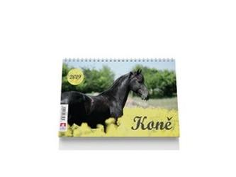 Koně 2019 - stolní kalendář