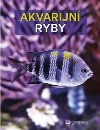 Akvarijní ryby - Velký obrazový atlas - Wally Kahl